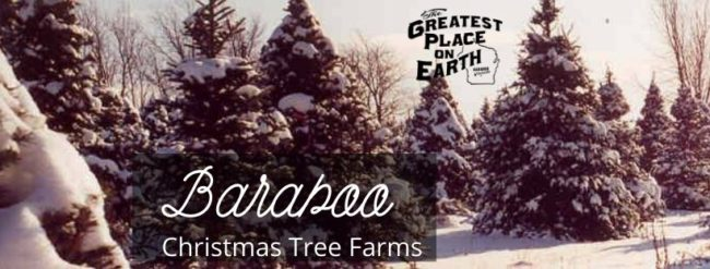 Baraboo Christmas Tree Farms